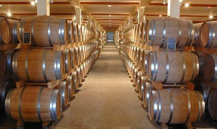 principales saveurs du vin