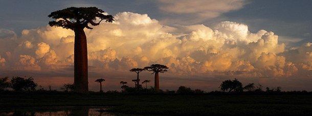 Comment explorer les îles de l'océan indien