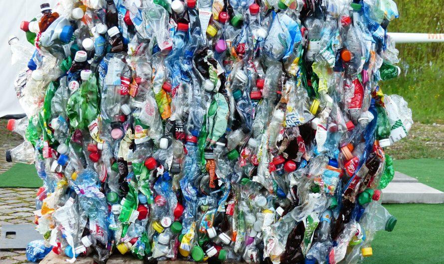 7 avantages du recyclage